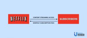 Online streaming platform such as Netflix